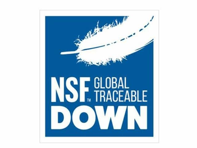Das NSF Logo