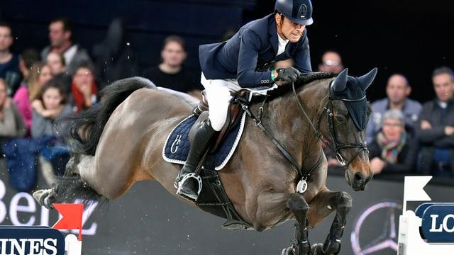 Pferd und Reiter springen über ein Hindernis.