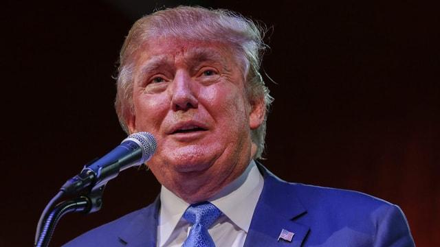Porträt von Donald Trump.