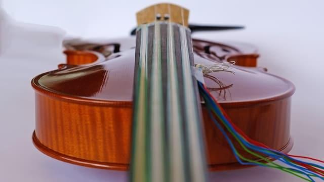 Frontaufnahme der liegenden Geige.