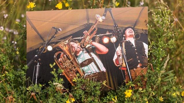 Foto mit Volksmusikern in Blumenwiese