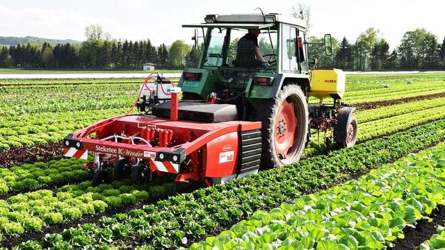 Ein Traktor mit einem Anhänger fährt übers Feld.