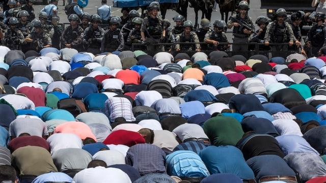 Muslime in der Jerusalemer Altstadt beten vor israelischen Soldaten.