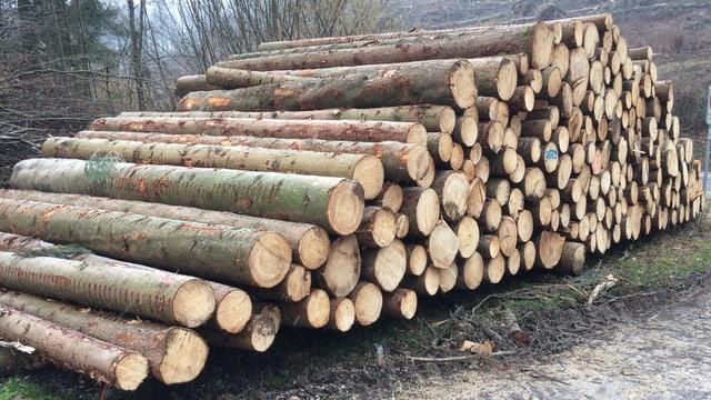 Entastete Baumstämme auf einem Haufen