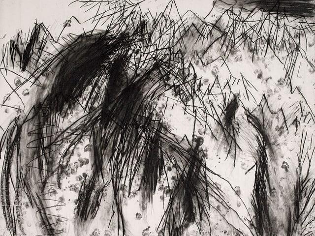 Eine Kohlezeichnung der Schweizer Künstlerin Miriam Cahn.