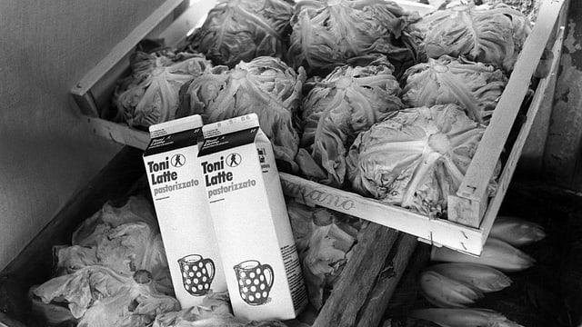 Aufnahme von Salatköpfen und zwei Milchpackungen