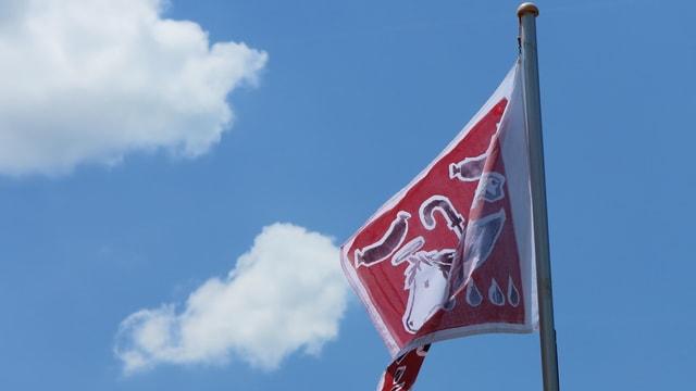 Eine Fahne