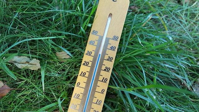 Thermometer liegt im Gras und zeigt über 30 Grad an.