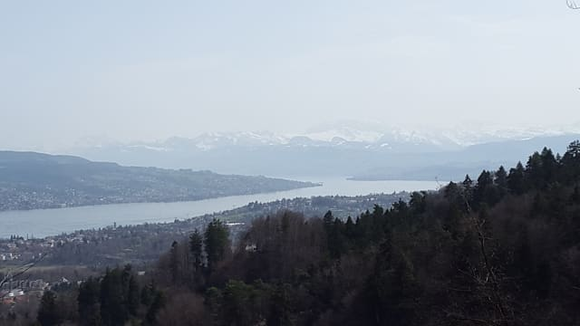 Blick von Üetliberg Richtung Glarner Alpen.