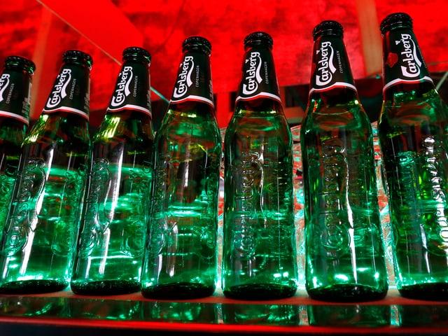 Aufgereihte Carlsberg-Flaschen.