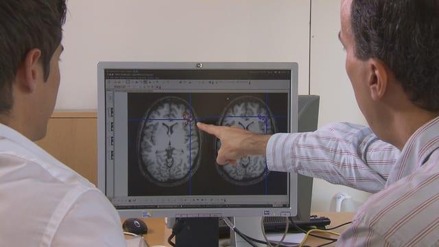 Zwei Forscher zeigen auf einem Bildschirm auf die Zone des Gehirns, die bei Risiko-Entscheidungen aktiv ist.