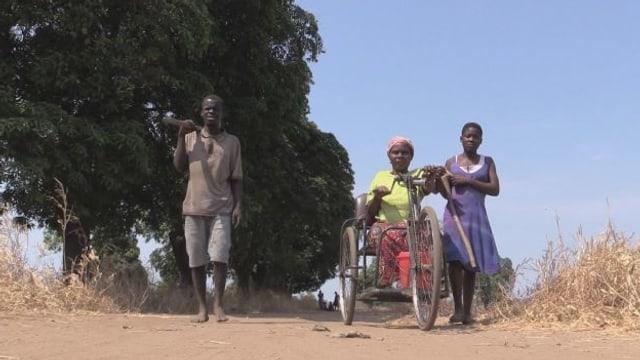 Video «Dank Biodünger zum Lebenstraum» abspielen
