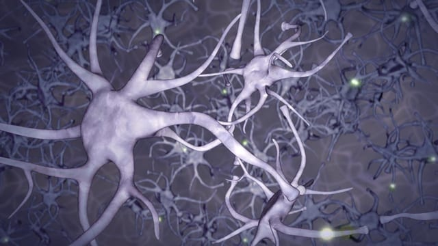 Video «Fittes Gehirn, Krankenkassenwechsel, «Pot au Puls»» abspielen