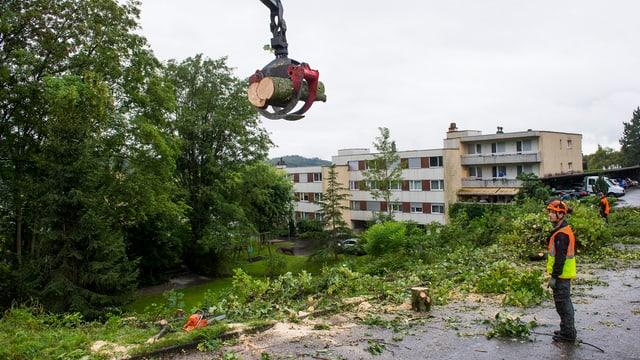 Ein Bagger transportiert Baumstämme ab, im Hintergrund Wohnblöcke.
