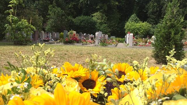 Blumen und Grabsteine