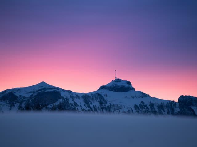 Säntis mit lila Himmel und Schnee, unten Nebel