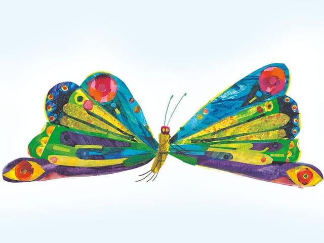 Ein Schmetterling mit bunten Flügeln.