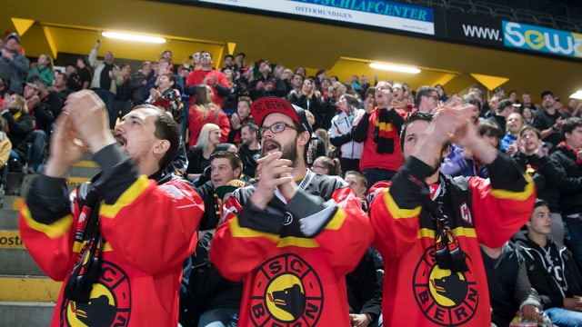 Berner Fans applaudieren auf der Tribüne.