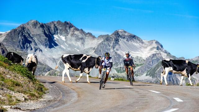 ciclists tranter vatgas sin via