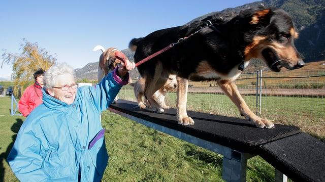 Frau führt Hund über eine Rampe.