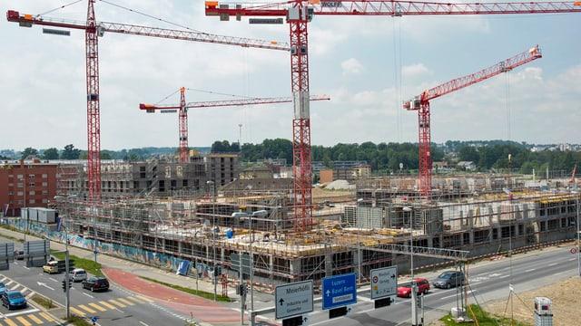 Blick auf eine Baustelle mit vier Kränen.