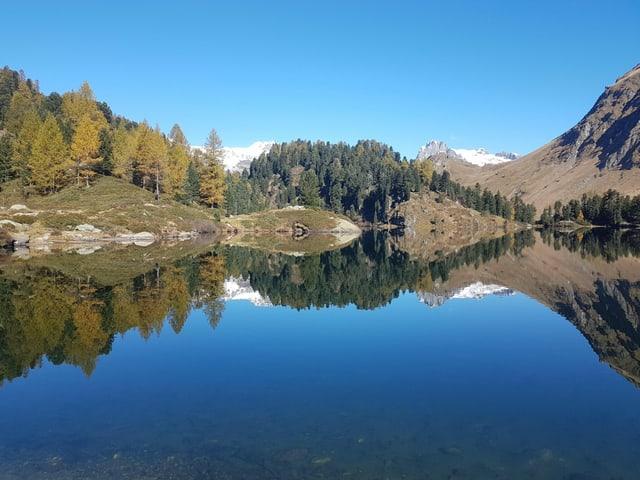 spiegelglatter See, gelbe Lächen.