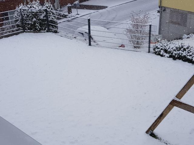 Schnee im Garten.