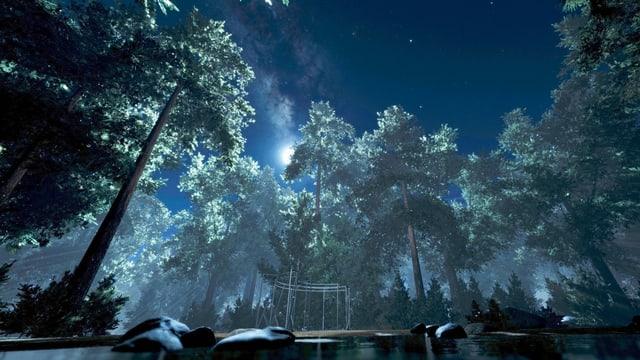 ein VR-Bild eines Waldes mit See