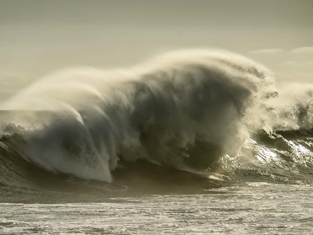 Grosse brechende Welle