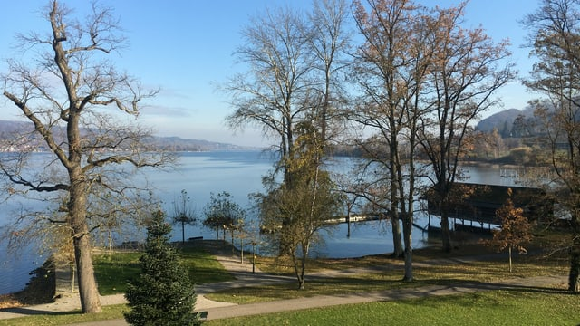 Blick durch einen Park auf den Untersee mit blauem Himmel.