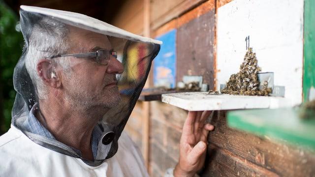 Ein Imker mit Schutzkleidung vor seinem Bienenhäuschen.