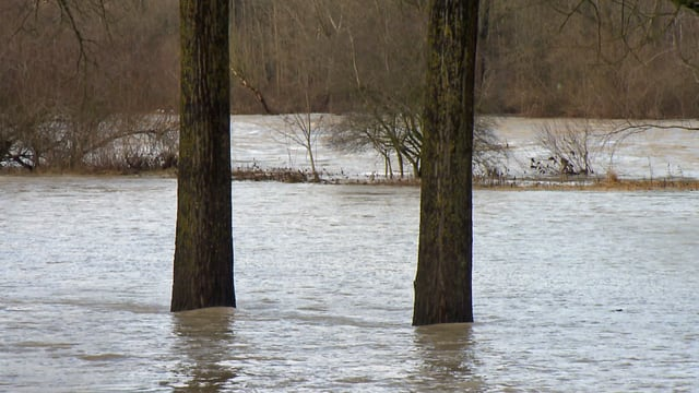 Bach mit Hochwasser