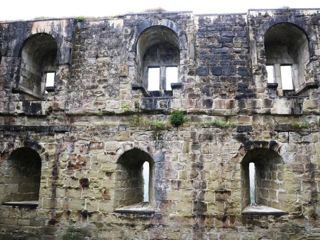 Sechs Fenster in der Steinmauer einer Burgruine.