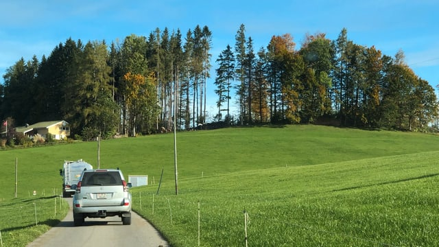 Sturmschäden im Schluchwald in Stein ein Jahr nach dem Sturm Vaia