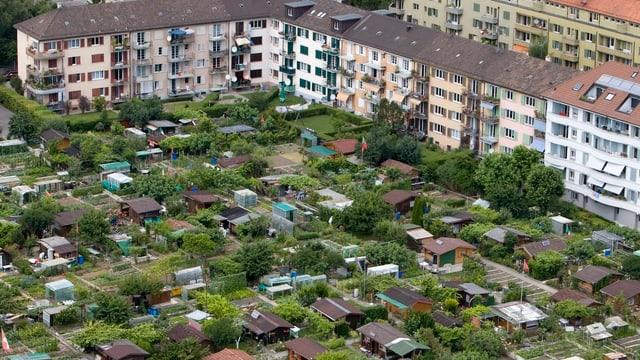 Schrebergärten zwischen Häusern aus der Vogelperspektive