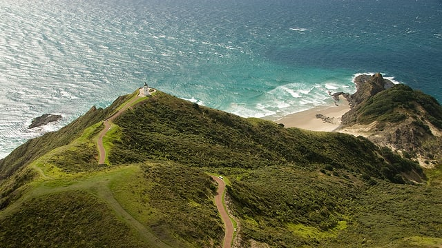 Küste Neuseelands.