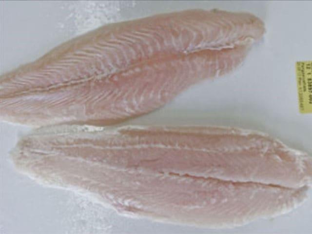 Zwei unbehandelte Fischfilets auf einer weissen Unterlage.
