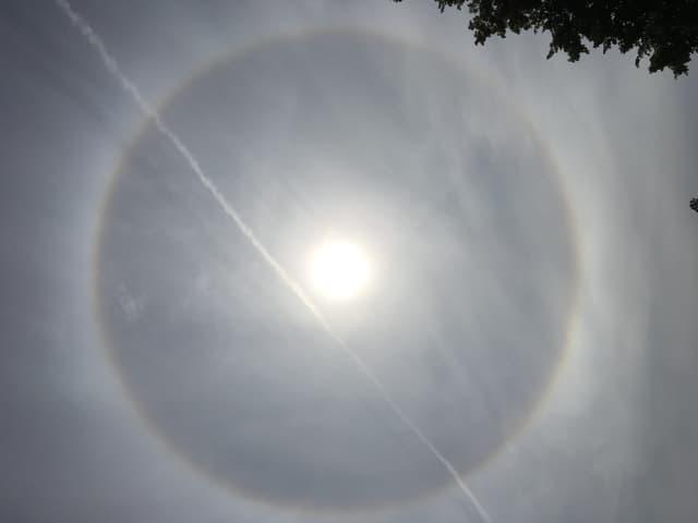 Schleierwolken am Himmel, milchige Sonne und rundherum ein Ring.