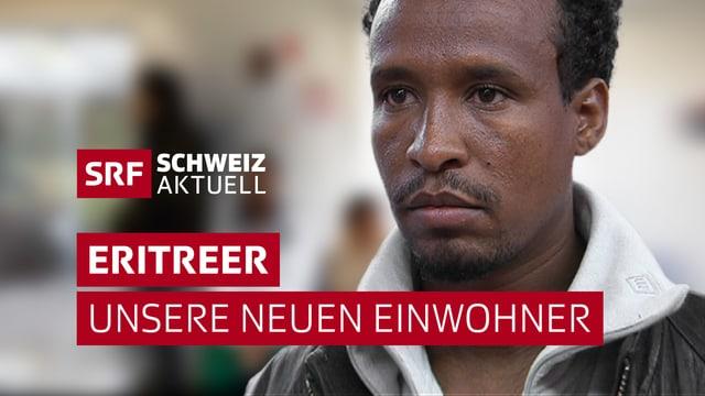 offizielles Logo Eritreer