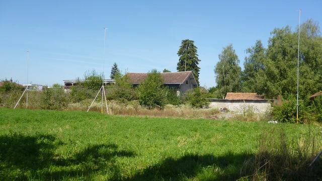 Ein Bauprofil steht auf einer Wiese, im Hintergrund stehen mehrere alte Häuser