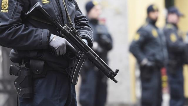 Polizist danais cun arma.