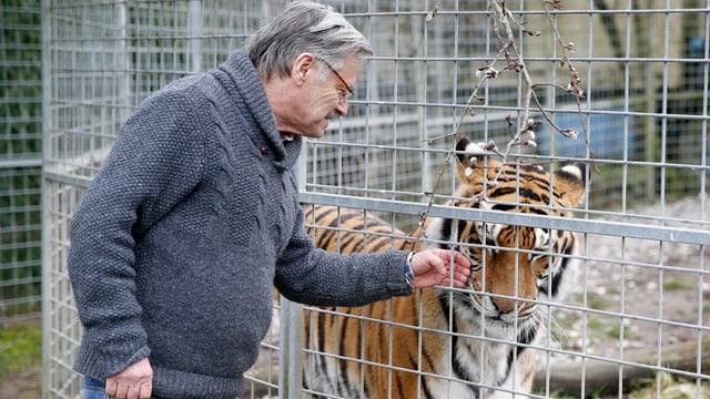 Mann streichelt durch Käfig einen Tiger