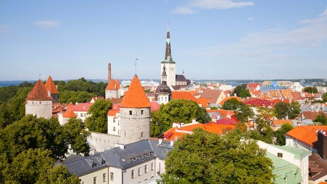 Stadtsicht Tallinn