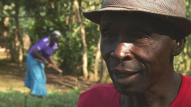 Video «Maurice Abungena schützt den Wald und verdient mehr» abspielen