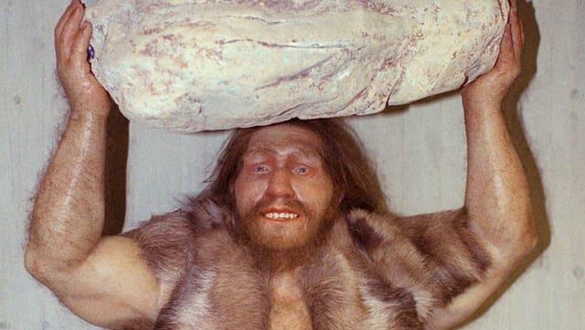 Eine Figur einers Neandertalers mit einem Stein über dem Kopf.