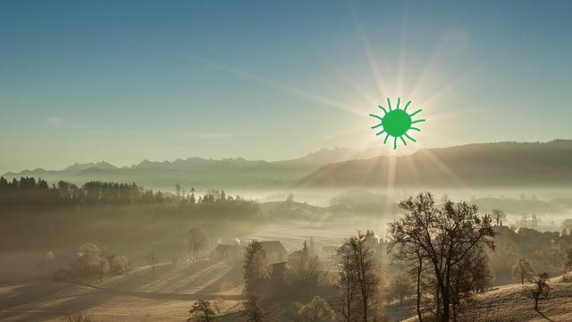 Grünne Sonne