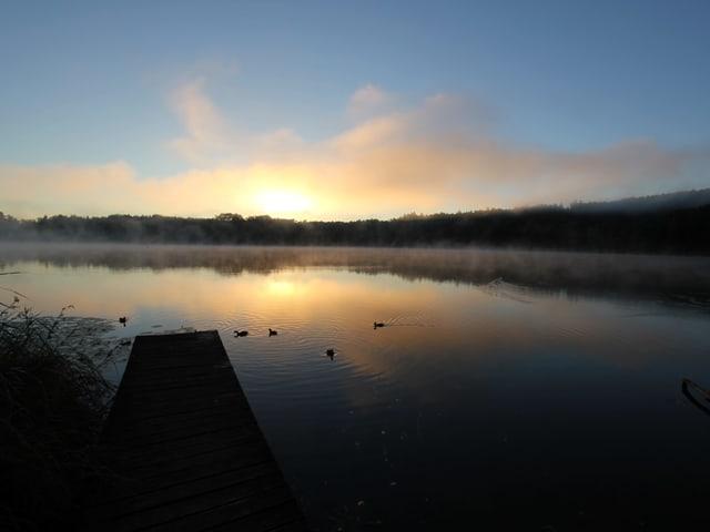 Nebelschwaden über einem See.