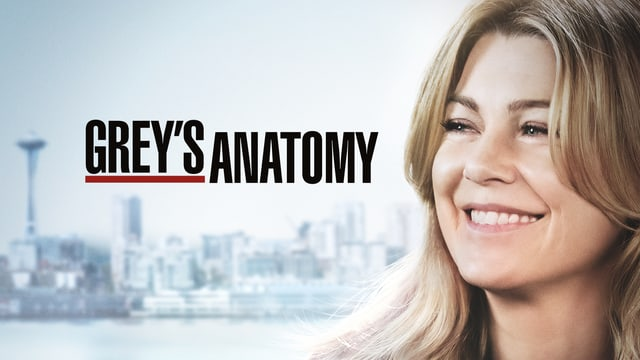 Keyvisual Grey's Anatomy Staffel 15