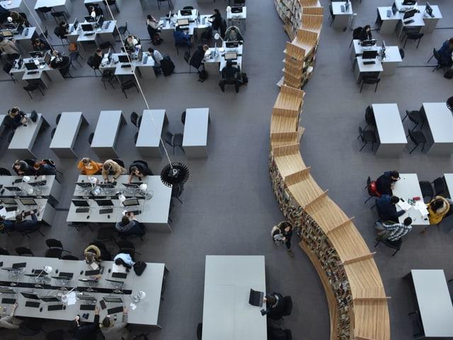 Bibliothek der Universität