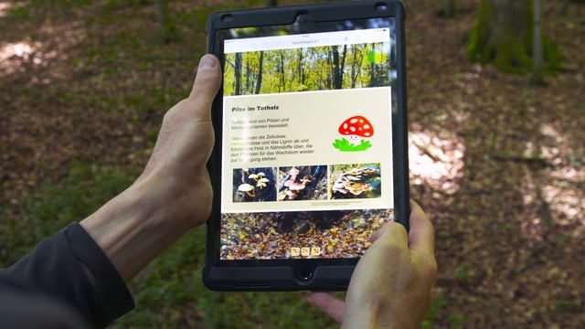 Person hält Tablet in den Händen.